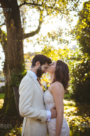 Bride kissing on grooms forehead in the gardenの写真素材 [FYI02242103]