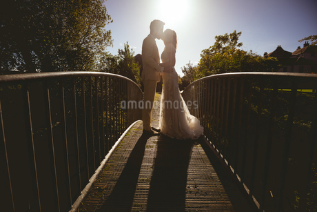 Bride and groom kissing on the footbridge in the gardenの写真素材 [FYI02242202]