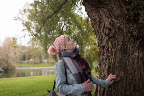 Woman in winter clothing looking at treeの写真素材 [FYI02242261]
