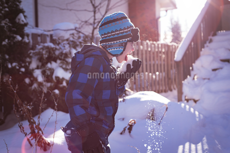 Cute boy licking snowの写真素材 [FYI02242399]