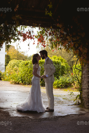 Bride and groom kissing at the garden entranceの写真素材 [FYI02242486]