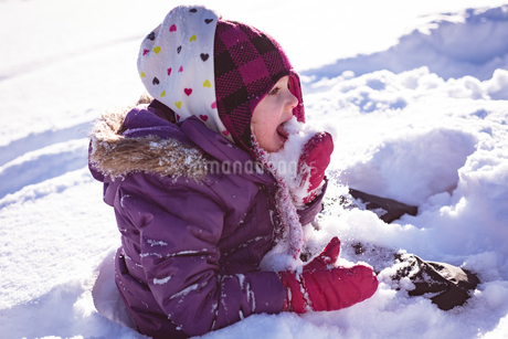 Cute girl licking snowの写真素材 [FYI02242563]