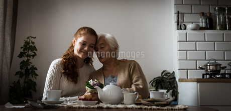 Grandmother and grand daughter interacting with each otherの写真素材 [FYI02242704]