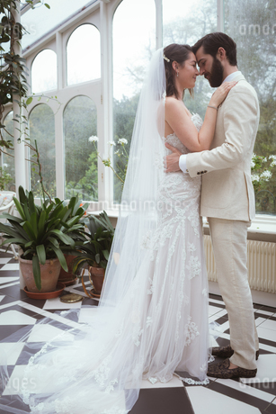 Romantic bride and groom embracing in the balconyの写真素材 [FYI02242840]