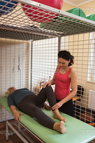 Female physiotherapist giving knee massage to senior patientの写真素材 [FYI02242996]