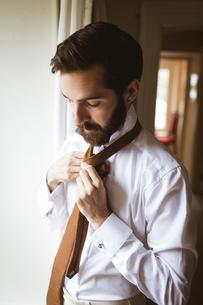 Handsome man tying his tieの写真素材 [FYI02242999]