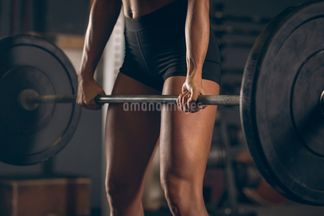 Fit woman lifting the barbellの写真素材 [FYI02243459]