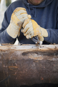 A man preparing the timber by removing nails and studs.の写真素材 [FYI02243496]