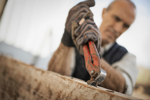 A man Using a tool to remove metals from timber.の写真素材 [FYI02243513]