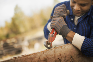 A man Using a tool to remove metals from timber.の写真素材 [FYI02243553]