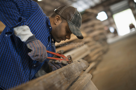 A man in a reclaimed timber yard removing nails from woodの写真素材 [FYI02243634]