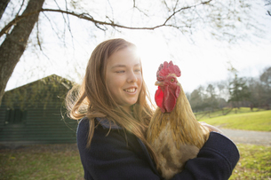 A young girl holding a chicken with brown feathersの写真素材 [FYI02243740]