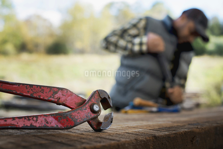 A man preparing the timber removing nails and studs.の写真素材 [FYI02243744]