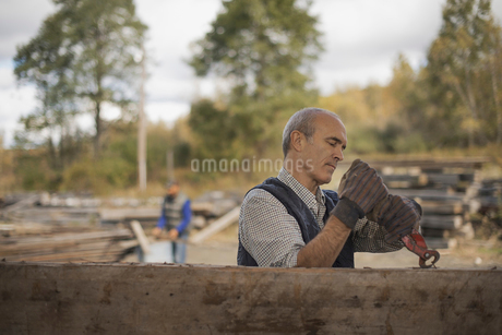 Two men in a reclaimed timber yard. Removing nails from woodの写真素材 [FYI02243945]