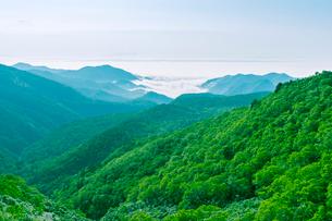 知床峠から羅臼方面を望むの写真素材 [FYI02243977]