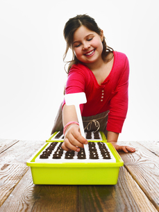 A young girl planting seeds in a modular seed trayの写真素材 [FYI02244320]