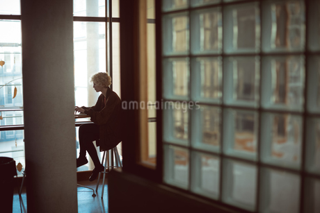 Woman using laptop in cafeteriaの写真素材 [FYI02244704]