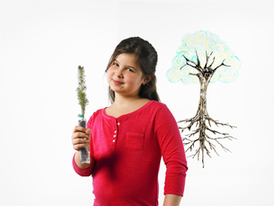 A young girl holding a small evergreen seedling.の写真素材 [FYI02244715]