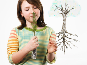 A young girl holding a small evergreen seedling to her noseの写真素材 [FYI02244805]