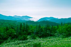 知床峠から羅臼方面を望むの写真素材 [FYI02245106]
