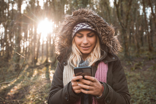 Woman using mobile phone in forestの写真素材 [FYI02245272]