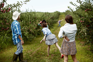 A man and three young women throwing fruit at each other.の写真素材 [FYI02245845]