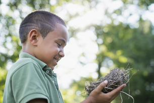 A young boy outdoors on a summer day, holding a bird nest.の写真素材 [FYI02245937]