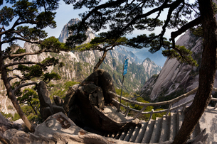 Huang Shan landscape, Chinaの写真素材 [FYI02246011]