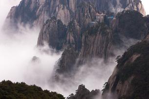 Huang Shan, Anhui Province, Chinaの写真素材 [FYI02246088]