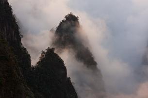 Huang Shan, Anhui Province, Chinaの写真素材 [FYI02246145]