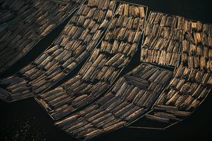 Logs awaiting export, Skagit County, Washingtonの写真素材 [FYI02246329]