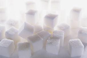 Sugar cubes on white backdropの写真素材 [FYI02246742]