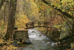 A river in American Fork Canyon. bridgeの写真素材 [FYI02246875]