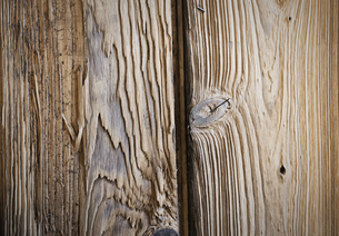 Two planks of wood, with knots and wood grain patterns.の写真素材 [FYI02246935]