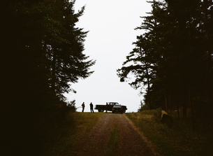 Cranberry farm USA farm road with a vehicle Two peopleの写真素材 [FYI02247012]