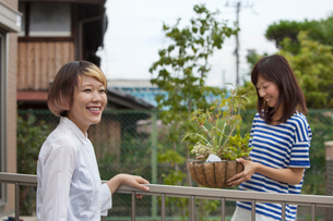 Two women standing in a garden.の写真素材 [FYI02247279]
