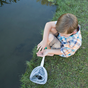 A young boy sitting on a river bank, examining a small fish, a tiddler he scooped up in a net.の写真素材 [FYI02247341]