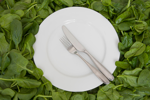 A white china plate with a knife and fork, resting on edible leaves. The concept of healthy eating.の写真素材 [FYI02247416]