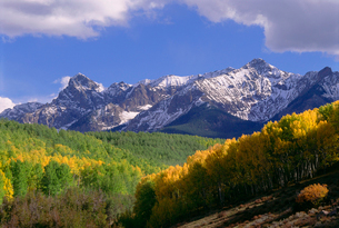 Mount Sneffels in the San Juan Mountains, in Ouray County. Aspen trees in autumn.の写真素材 [FYI02247523]