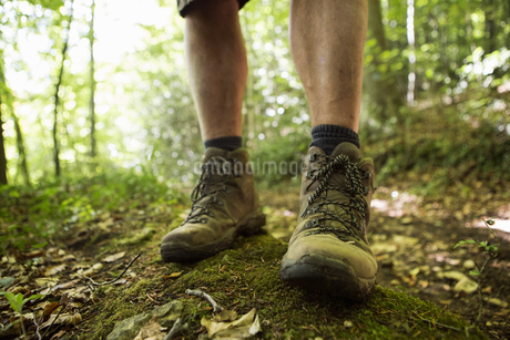 Close up of a man's feet in hiking boots on a woodland path in summer.の写真素材 [FYI02247745]