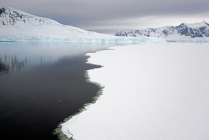 View from above, of melting sea ice off the shores of islands in Antarctica.の写真素材 [FYI02247850]