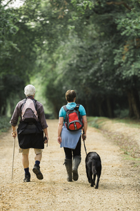A mature couple hiking with their dog.の写真素材 [FYI02248186]