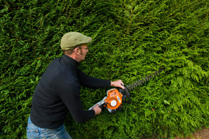 A man trimming a thick green hedge with a motorized hedge trimmer.の写真素材 [FYI02248291]