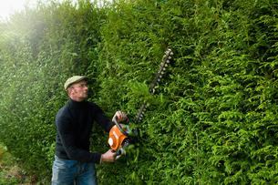 A man trimming a tall hedge with a motorized hedge trimmer.の写真素材 [FYI02248410]