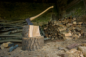 Axe stuck in a piece of wood on top of a chopping block, a pile of logs and chopped wood.の写真素材 [FYI02248455]