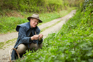 A man in a long coat and boots foraging for edible and tasty plants in the hedgerow.の写真素材 [FYI02248598]