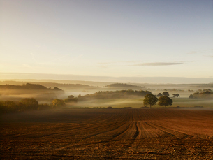 A ploughed field and view over surrounding undulating hills, at dawn with a mist rising from the lanの写真素材 [FYI02248608]