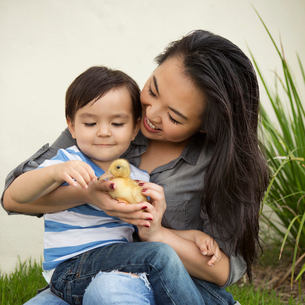 Smiling woman holding a yellow duckling in her hands, her young son watching.の写真素材 [FYI02248623]