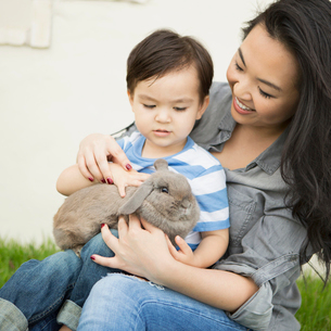 Smiling woman holding a rabbit, her young son sitting on her lap, stroking the animal.の写真素材 [FYI02248630]