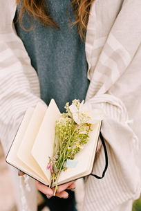 Close up of a woman holding a notebook with wild flowers lying between the pages.の写真素材 [FYI02248643]